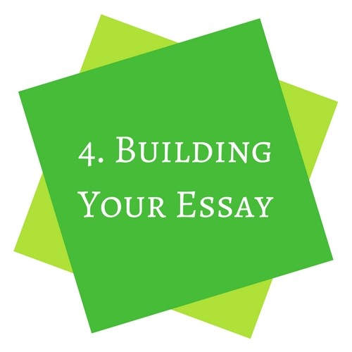 Building Your Essay