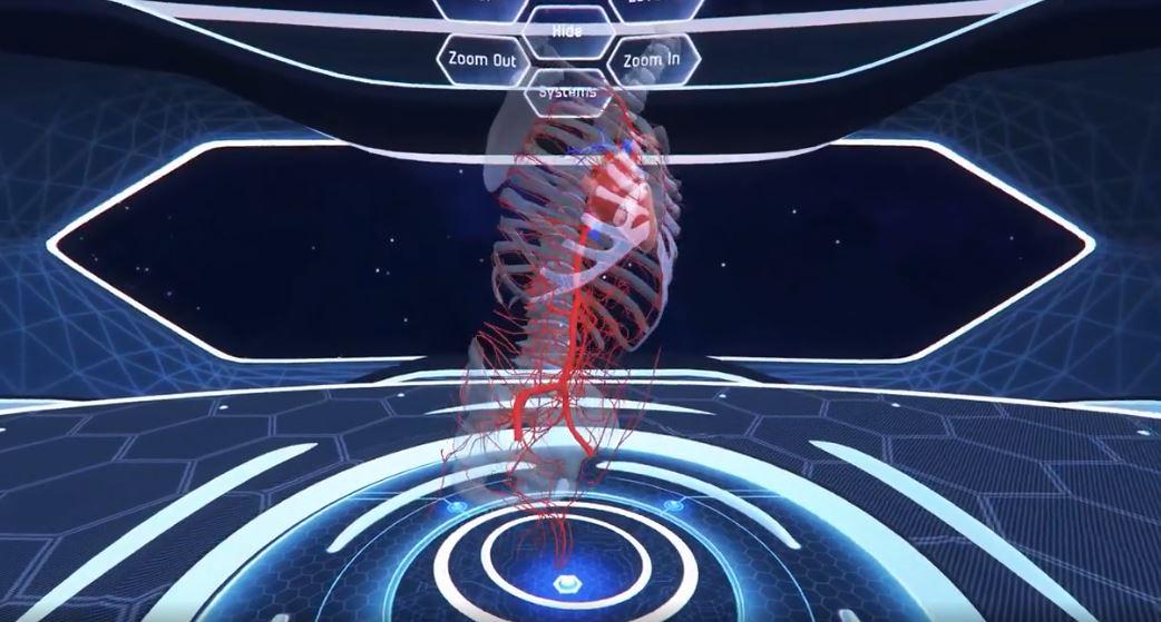 Anatomy in Virtual Reality